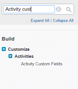 Activity customer fields